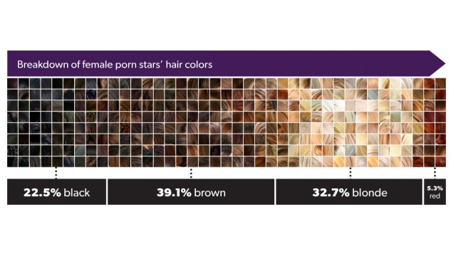 Click here to read Porn Star Demographics, Visualized
