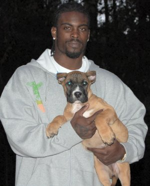 Michael Vick, Somehow, With Even Less Credibility