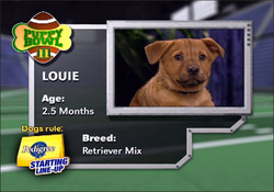 Refreshingly Free Of Jim Nantz, It's Puppy Bowl III
