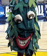 The Ballad Of Stanford's Misbehaving Tree