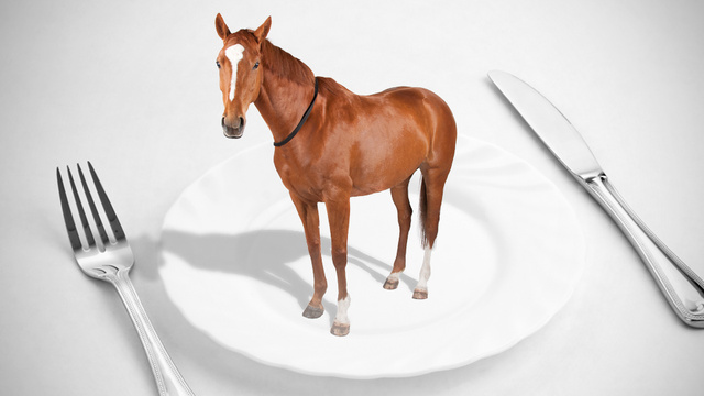 Are You Eating Horse? Europe's Growing Horse Meat Scandal Explained