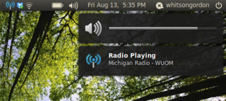 Radio Tray Is a Minimal Internet Radio Player for Linux