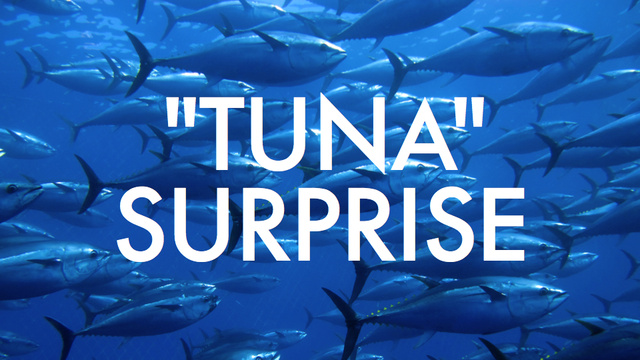 Most U.S. tuna isn't really tuna, and confusion can lead to oily anal leakage
