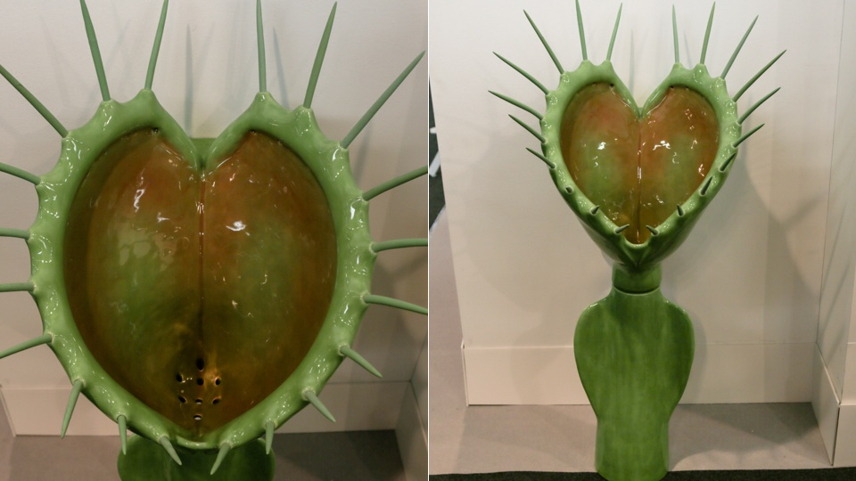 Types of Venus Fly Traps This Venus Fly Trap Sculpture