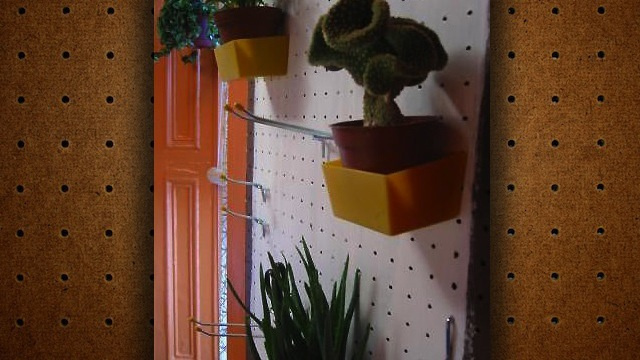 Store Plants on Pegboard to Save Floor Space