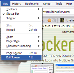 Fullscreen Mode Gets Serious in Firefox 3