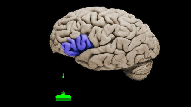 Scientists Prove Once Again That Playing Violent Video Games Alters Young Men's Brains