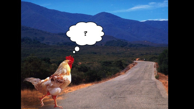 Why I Talked About Chickens to a Room Full of Game Developers