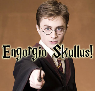 Harry Potter Magically Renames Classic Video Game Cheat
