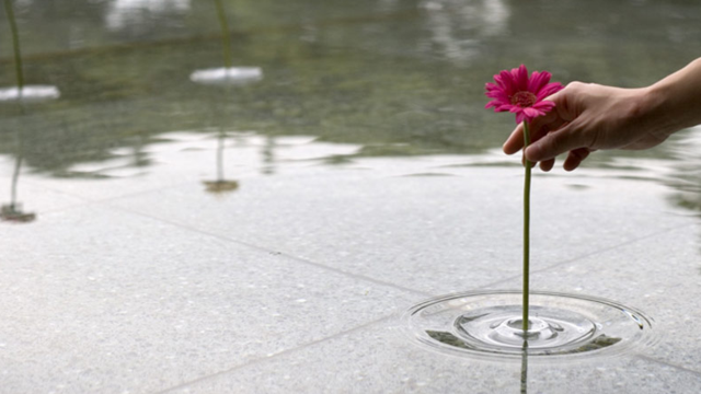 Click here to read These Awesome Floating Vases Are Practically Invisible