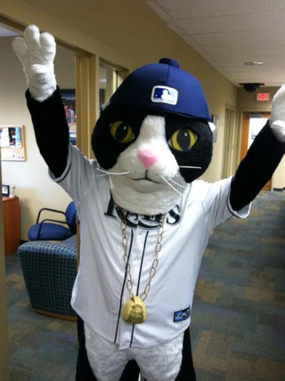 The Rays Now Lead The AL East In Mascots