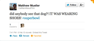 The Stupidest Tweets Of The Super Bowl