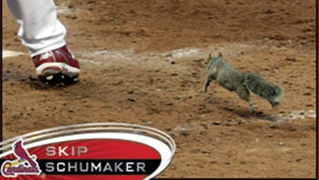 Skip Schumaker's New Baseball Card Features The Rally Squirrel