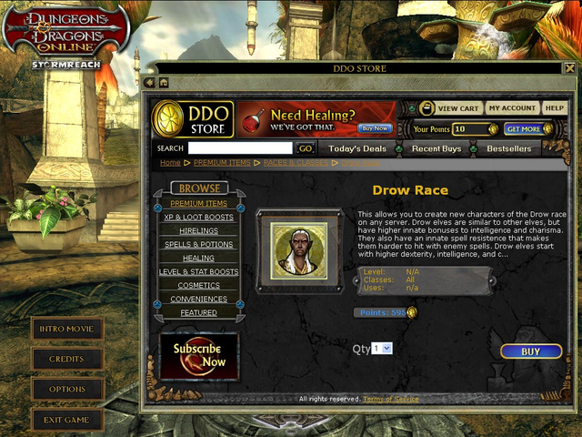Dungeons & Dragons Online's New Store