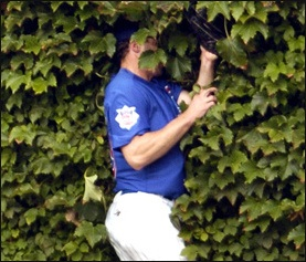 Some Dude Got Arrested For Breaking Into Wrigley Field And Ripping Ivy Off The Walls