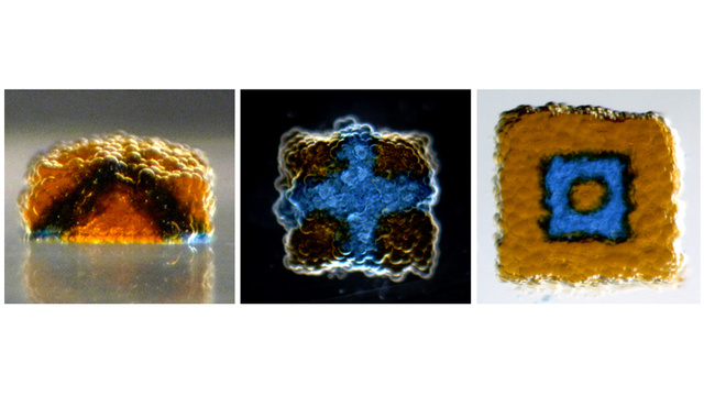 Click here to read Scientists Can Print Synthetic Tissue Using Just Water and Oil