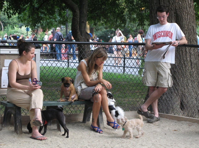 Dog Parks, White People Thrive in Cities