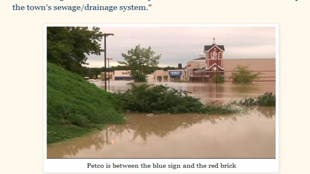 Was Petco Careless in Letting 100 Animals Die During a Recent Flood?