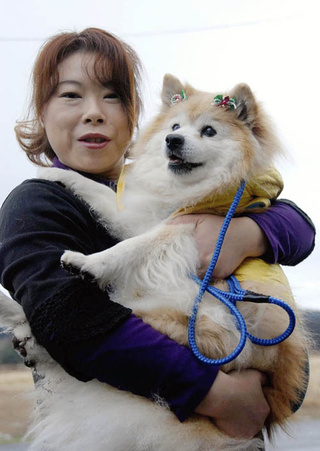 World's Oldest (And Possibly Cutest) Dog Dies At 26
