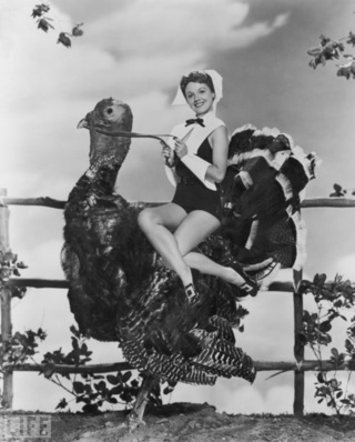 The Pin-Up Pilgrim Goes For A Turkey Trot