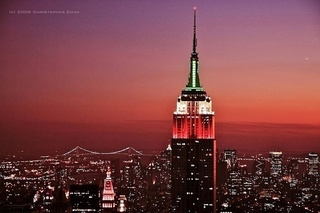 Bedbugs Attack Empire State Building!