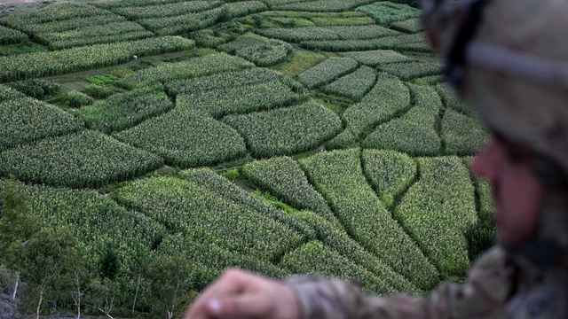 23 Amazing Labyrinths To Get Lost In
