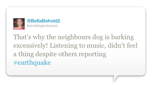 Dogs Predict Earthquake Gallery