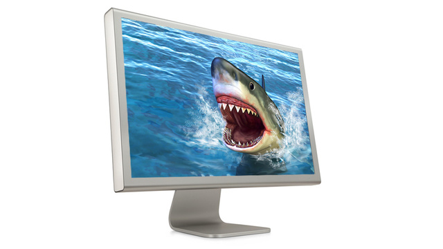 How to Watch Shark Week Online