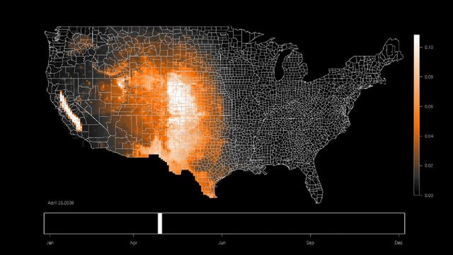 Stunning animated maps reveal bird migrations across the United States