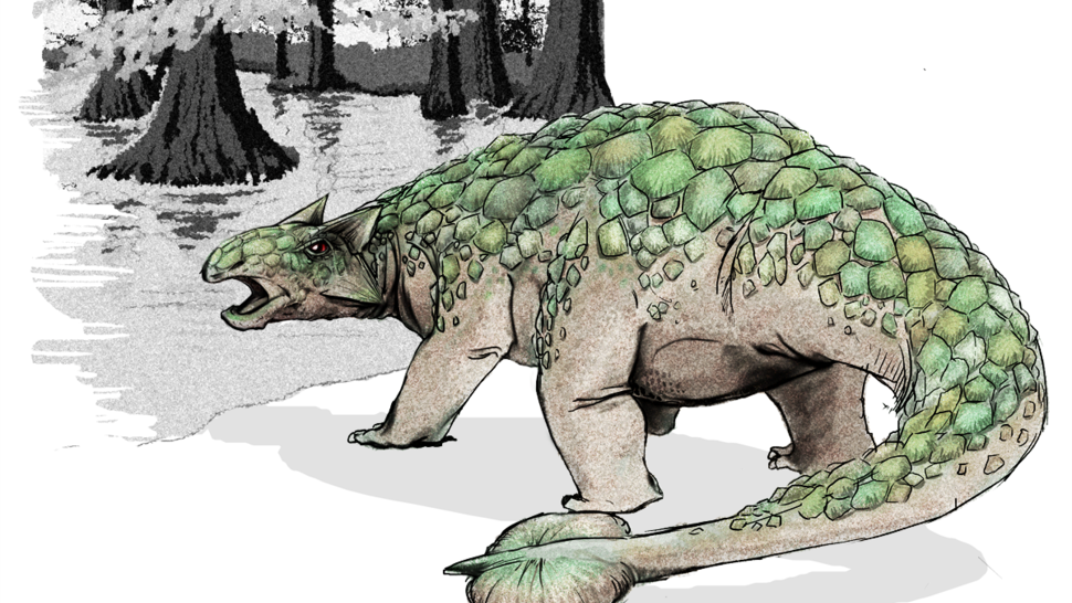 How did a heavily-armored dinosaur end up at the bottom of the ocean?