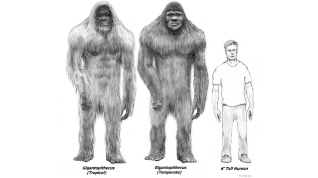Did bigfoot really exist?