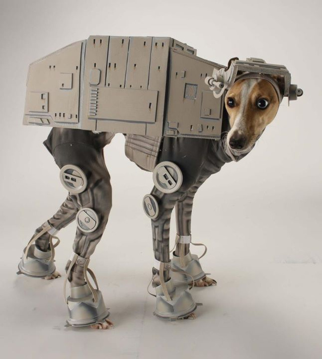 Why, that's a dog cosplaying as an AT-AT walker