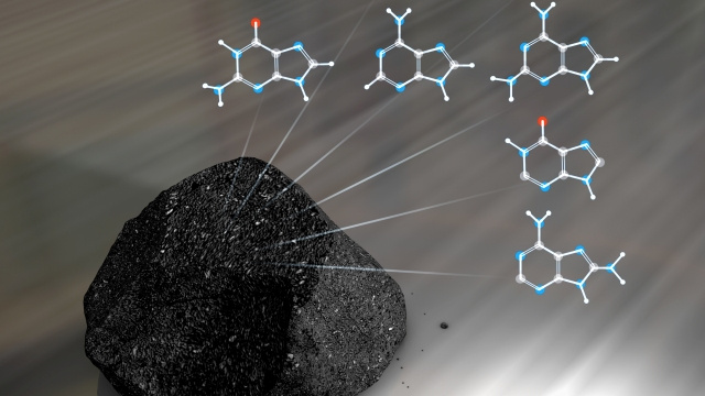 "Did ""DNA tool kits"" from meteorites make life on Earth possible?"