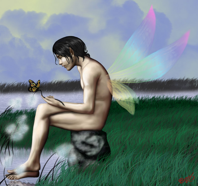 Boy Faeries