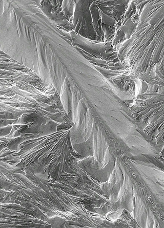 Explorers discover a lost civilization frozen in tiny sodium crystals