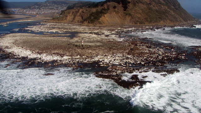 "How the Chile earthquake created miles of new, ""uplifted"" coastline"