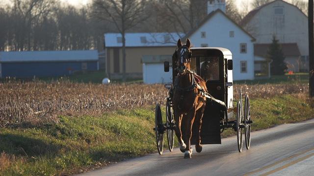Amish Woman Dies after Freak Laundry Accident