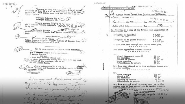 The Spy Secrets of the Last Unsealed WWI Files