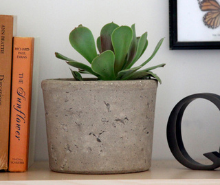 How to Make a Cool Concrete Planter of Your Own