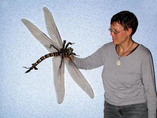 No, I Can't Possibly See What Could Go Wrong With GIANT Dragonflies Bred in a Lab