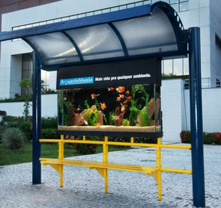Fish Tank Bus Stop May Not Be Entirely Practical