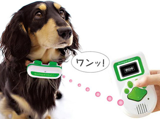 Bowlingual Discovers that Every Dog Has an Inner Japanese Woman