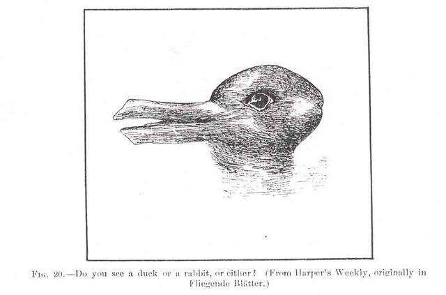 How To Create a Real-Life Rabbit-Duck Illusion