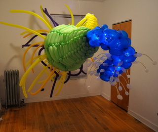 Balloon Creature Gallery