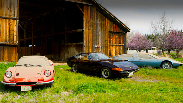 Trio of rare Italian exotics found in dusty Texas barn