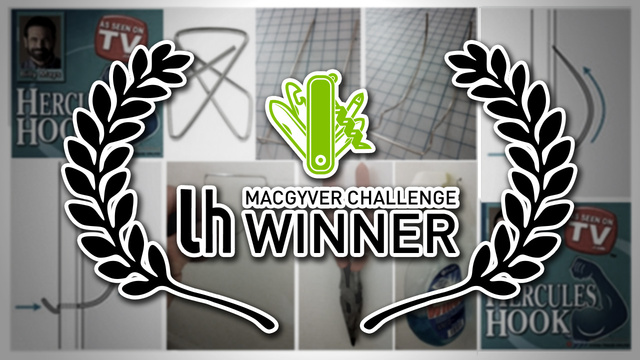 Challenge Winner: Make a DIY ...