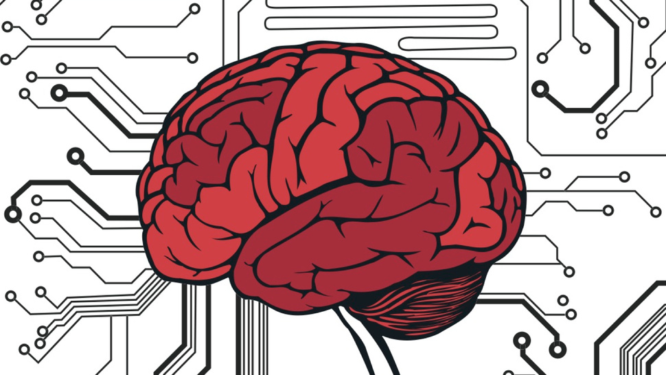 If your brain were a computer, how much storage space would it have?