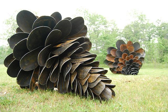 Can you guess what's strange about these pine cones?