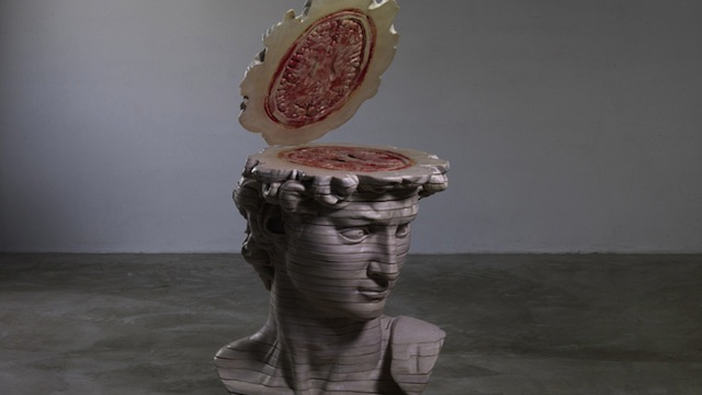 Explore the internal anatomy of the David's head slice by meaty slice