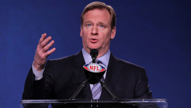 NFL Commissioner Goodell Defends Redskins Nickname